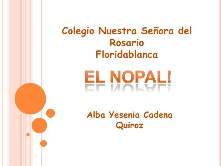 Colegio Nuestra Señora del          Rosario       Floridablanca    Alba Yesenia Cadena          Quiroz