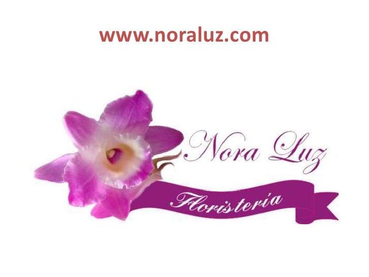 www.noraluz.com