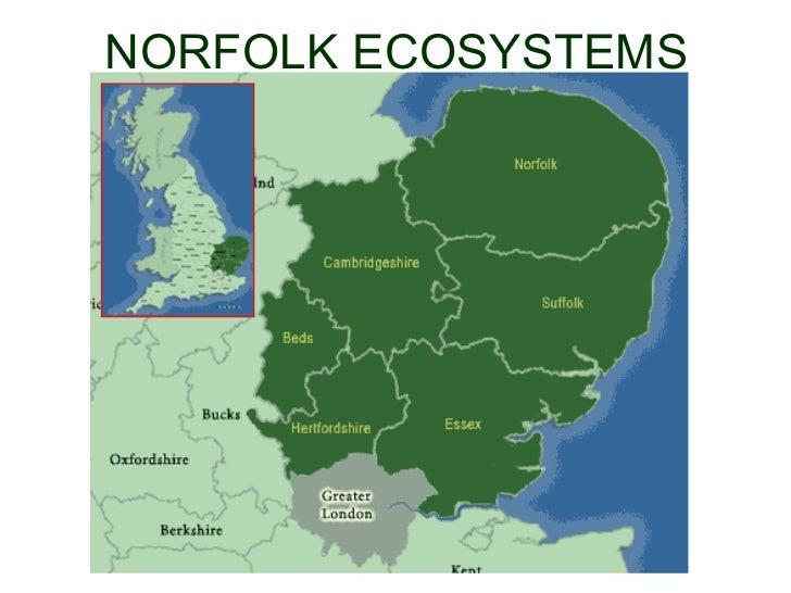 NORFOLK ECOSYSTEMS