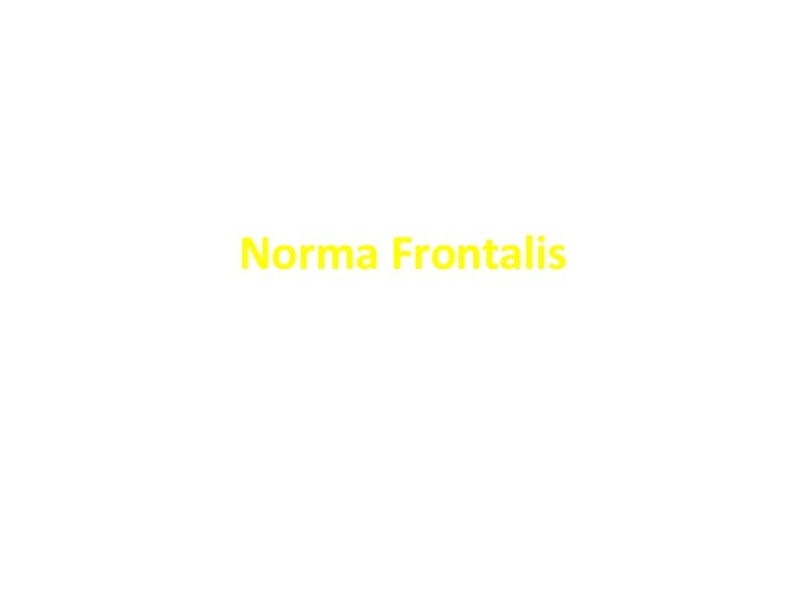 Norma Frontalis
