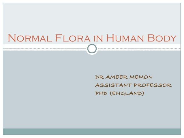 Normal Flora in Human Body             DR AMEER MEMON             ASSISTANT PROFESSOR             PHD (ENGLAND)