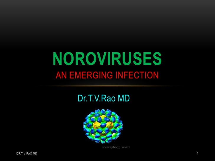 NOROVIRUSES                AN EMERGING INFECTION                    Dr.T.V.Rao MDDR.T.V.RAO MD                           1