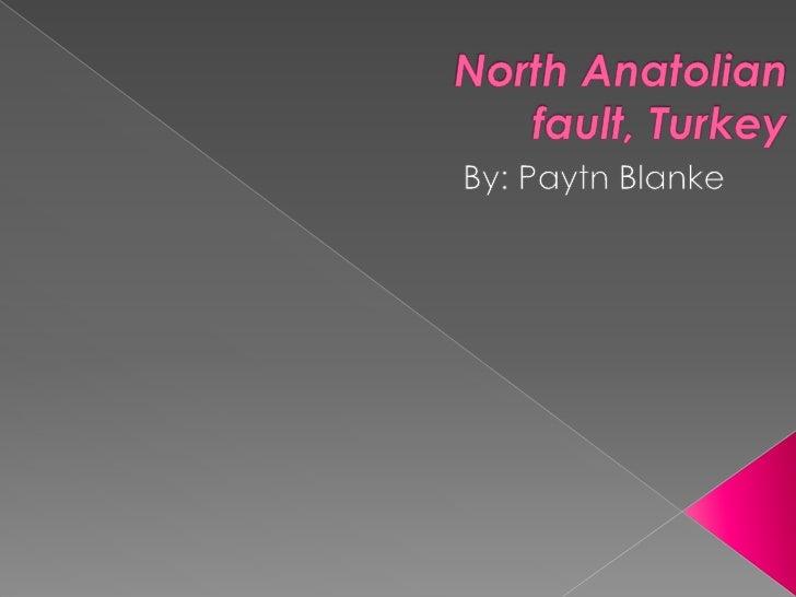 North Anatolian fault, Turkey<br />By: Paytn Blanke<br />