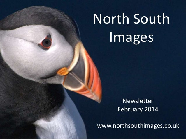 North South Images Newsletter February 2014