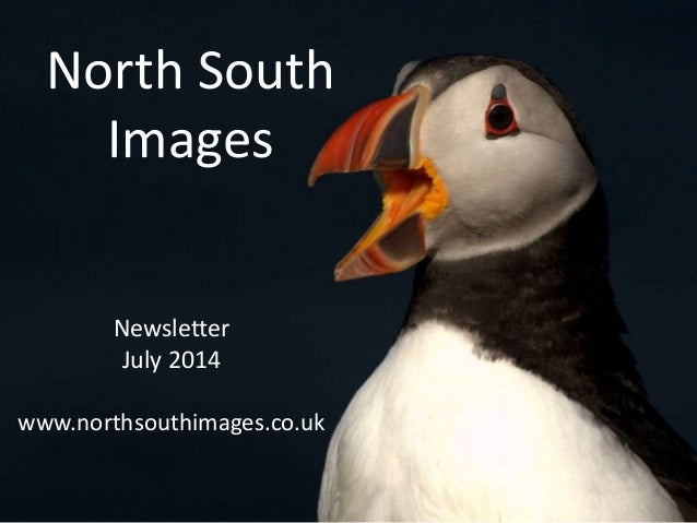 North South Images Newsletter July 2014