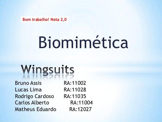 Bom trabalho! Nota 2,0         BiomiméticaBruno Assis           RA:11002Lucas Lima            RA:11028Rodrigo Cardoso     ...