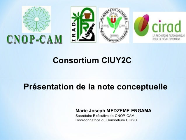 Présentation de la note conceptuelle Consortium CIUY2C Marie Joseph MEDZEME ENGAMA Secrétaire Exécutive de CNOP-CAM Coordo...
