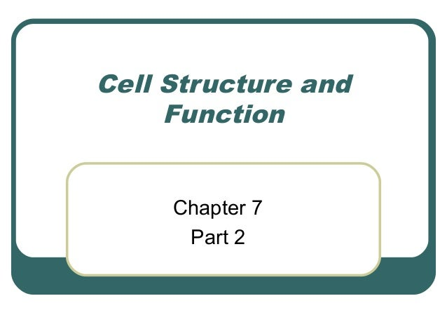 Cell Structure and Function Chapter 7 Part 2