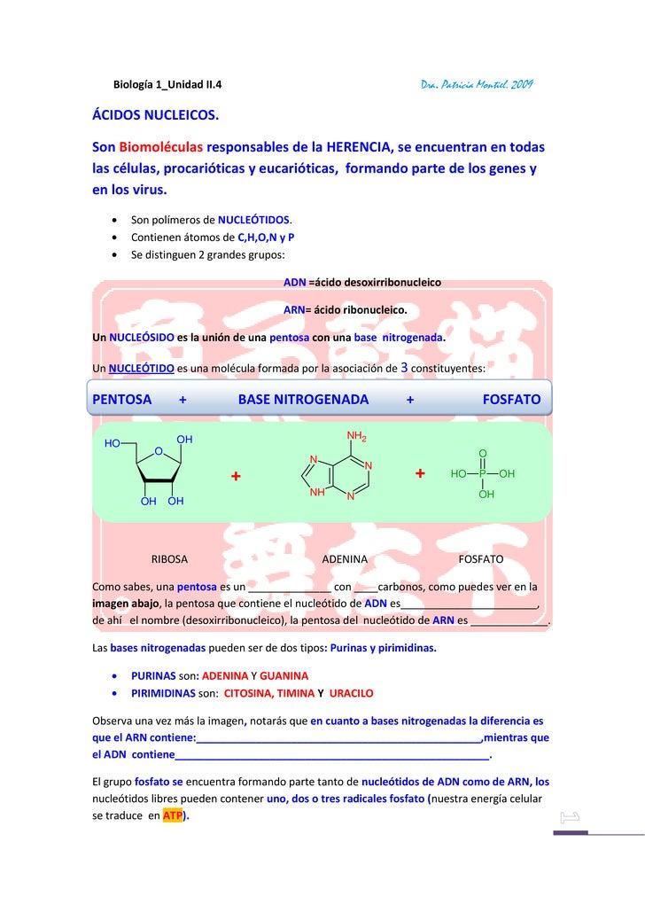N Otes M Ontiel BiologíA1 Unidad Ii 4