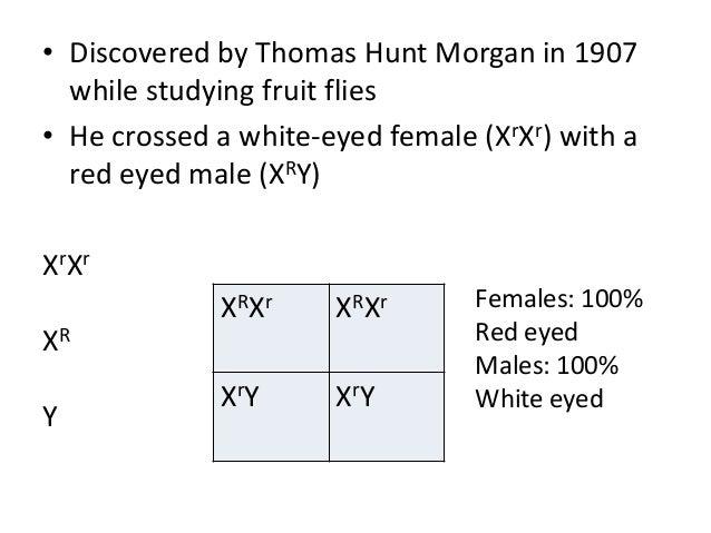 Thomas Hunt Morgan Discovery