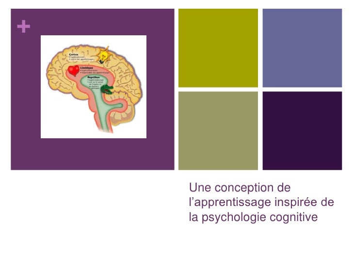 +         Une conception de     l'apprentissage inspirée de     la psychologie cognitive