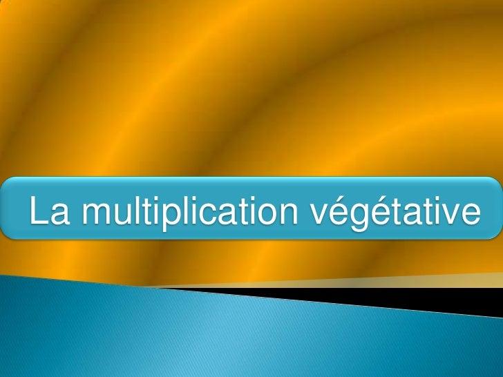 La multiplication végétative<br />