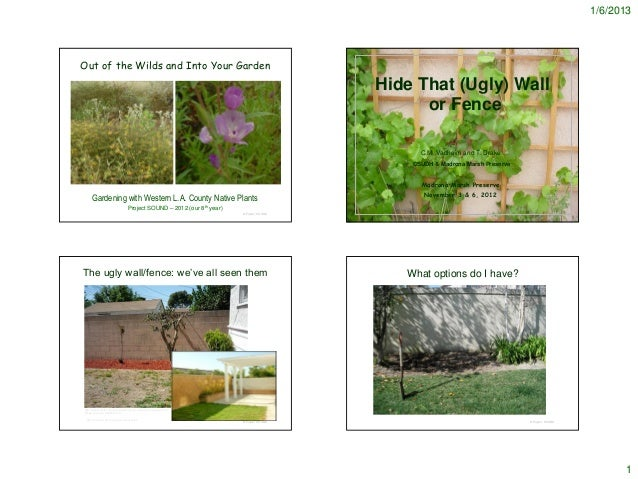 Hide that Ugly Wall - Notes