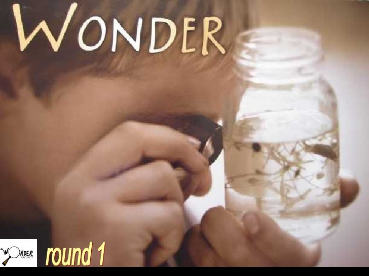 Wonder Nov 408