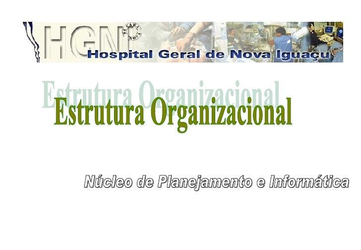 Núcleo de Planejamento e Informática Estrutura Organizacional