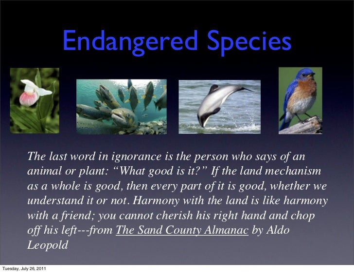 """Endangered Species            The last word in ignorance is the person who says of an            animal or plant: """"What go..."""
