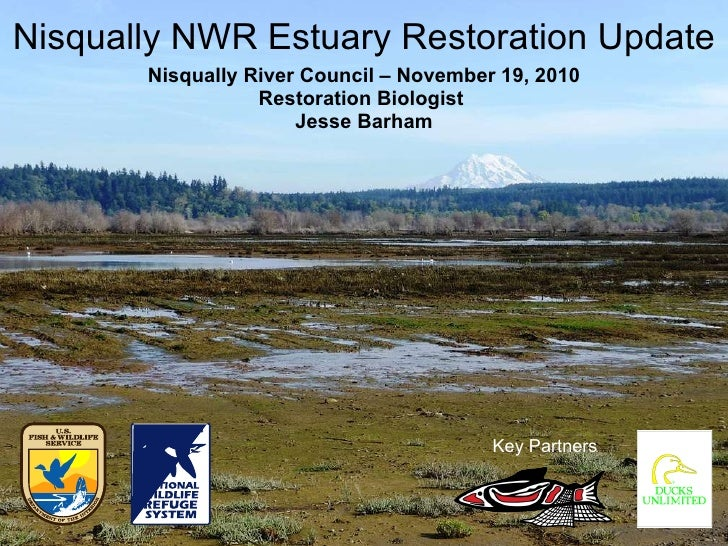 Nisqually NWR Estuary Restoration Update Nisqually River Council – November 19, 2010 Restoration Biologist  Jesse Barham K...