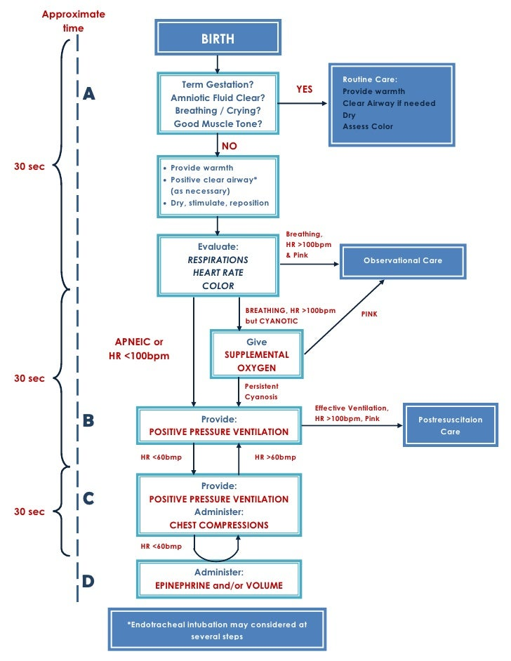Neonatal Resuscitation Program Diagram