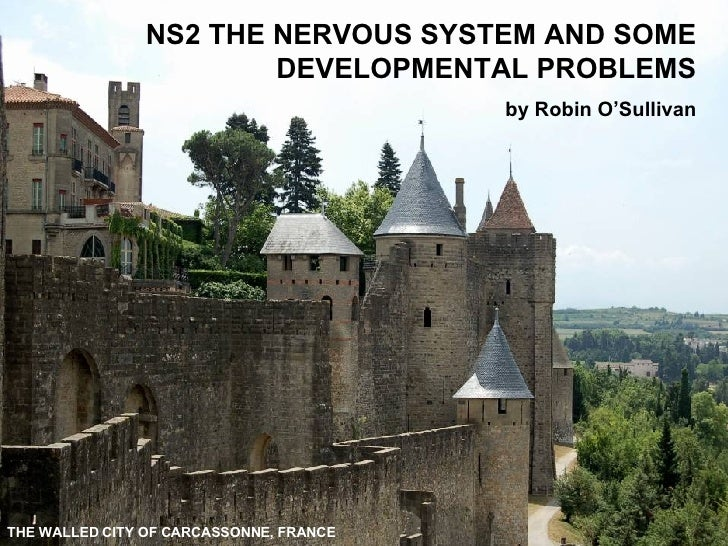NS2 THE NERVOUS SYSTEM AND SOME DEVELOPMENTAL PROBLEMS by Robin O'Sullivan THE WALLED CITY OF CARCASSONNE, FRANCE