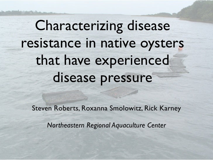Characterizing disease resistance in native oysters   that have experienced       disease pressure  Steven Roberts, Roxann...