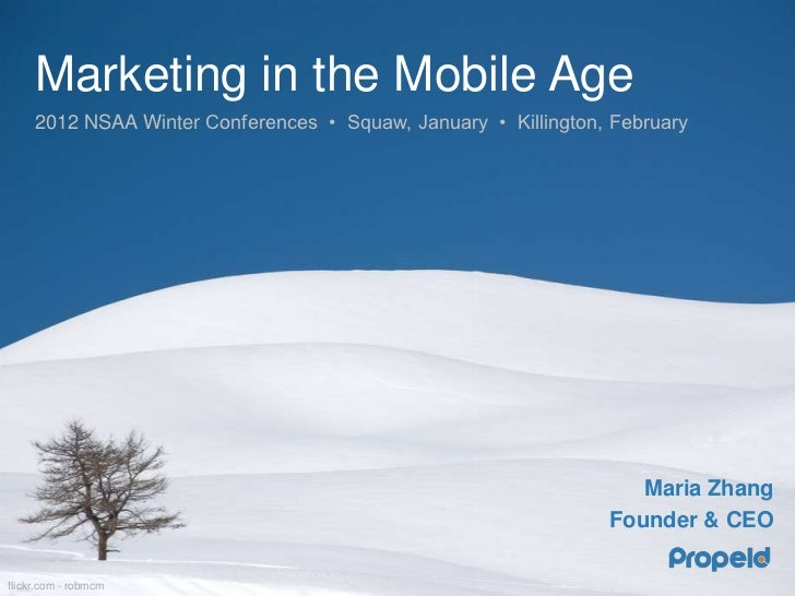 Marketing in the Mobile Age
