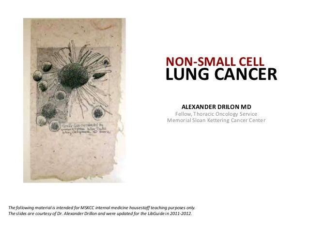 NON-SMALL CELL                                                                                 LUNG CANCER                ...