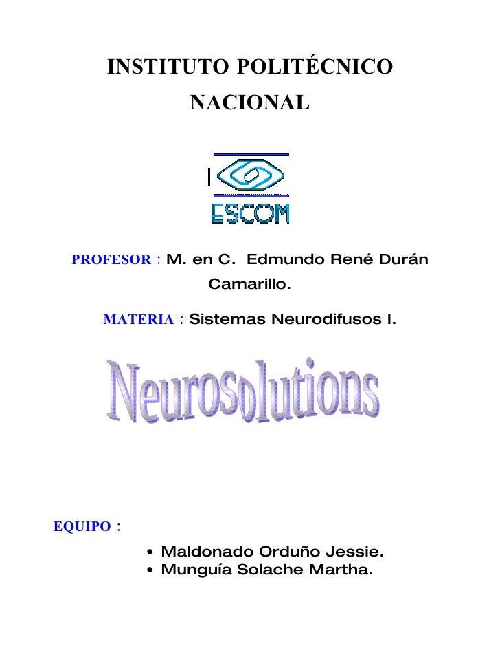 Manual NeuroSolutions