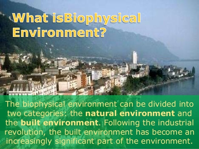 natural environment and early human development