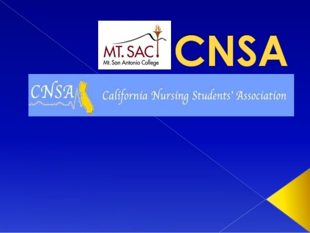  National Student Nurses Association  Different State Chapters › Within each State Chapters, they have different school ...