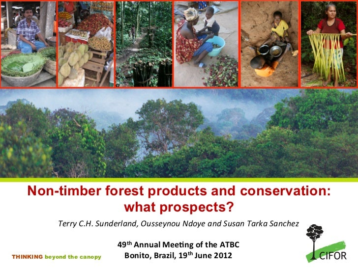 Non-timber forest products and conservation:                   what prospects?             Terry C.H. Sunderland, Ou...