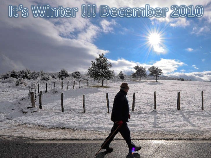 Early Winter - December 2010