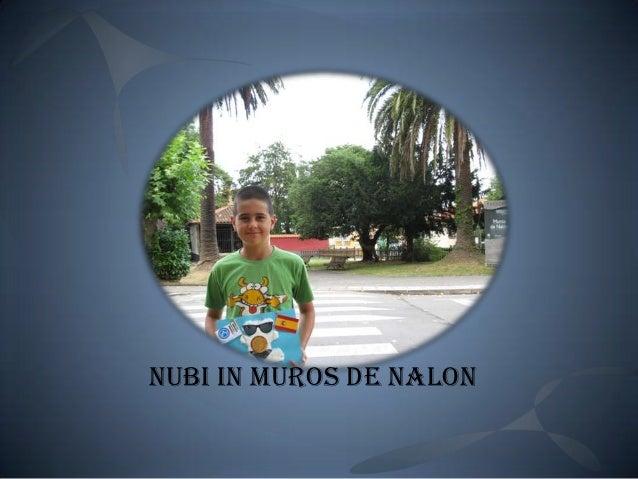 Nubi in muros de nalón