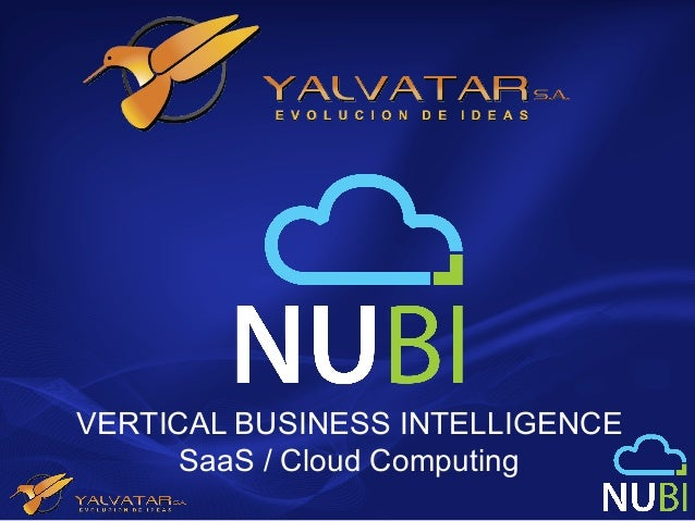 VERTICAL BUSINESS INTELLIGENCE      SaaS / Cloud Computing