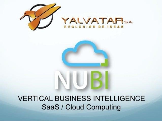 VERTICAL BUSINESS INTELLIGENCE      SaaS / Cloud Computing