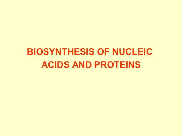 BIOSYNTHESIS OF NUCLEIC ACIDS AND PROTEINS