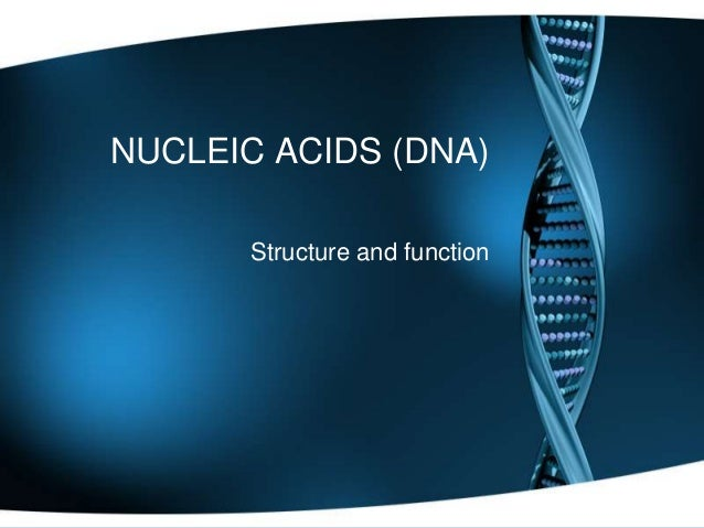 NUCLEIC ACIDS (DNA) Structure and function