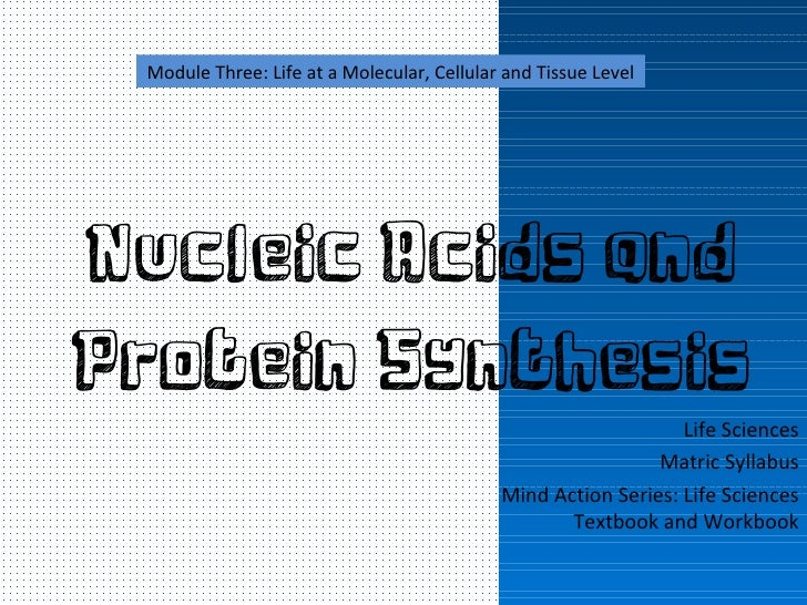 """nucleic acid and protein sythesis Dna replication and protein synthesis b5-b8 rna could have been the """"original"""" nucleic acid when life first arose on earth some 38 billion years ago."""