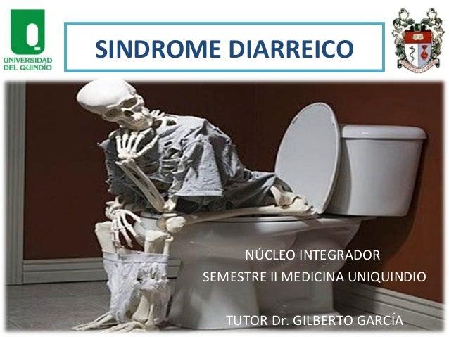 SINDROME DIARREICO  NÚCLEO INTEGRADOR SEMESTRE II MEDICINA UNIQUINDIO TUTOR Dr. GILBERTO GARCÍA