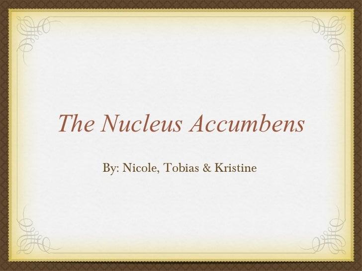 The Nucleus Accumbens <ul><li>By: Nicole, Tobias & Kristine </li></ul>