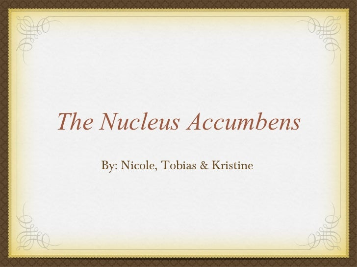 Nucleus accumbens-presentation