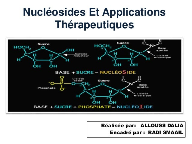 Nucléosides Et Applications Thérapeutiques Réalisée par: ALLOUSS DALIA Encadré par : RADI SMAAIL