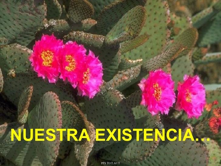 Nuestra existencia