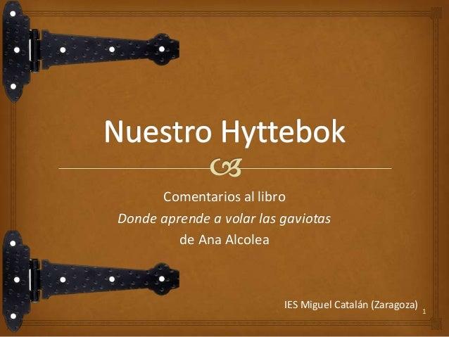 Comentarios al libro Donde aprende a volar las gaviotas de Ana Alcolea  IES Miguel Catalán (Zaragoza)  1