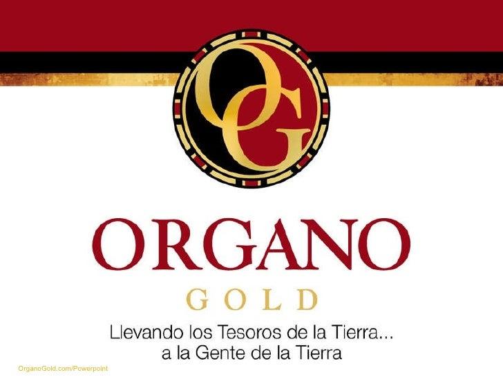 Nueva presentacion de organo gold 2011