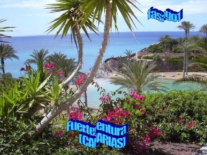 Fuerteventura-CANARIAS
