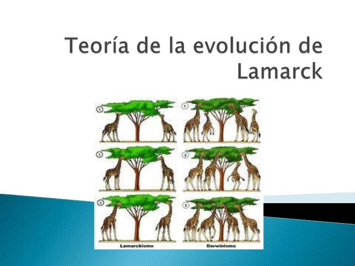 Teoría de la evolución de Lamarck<br />