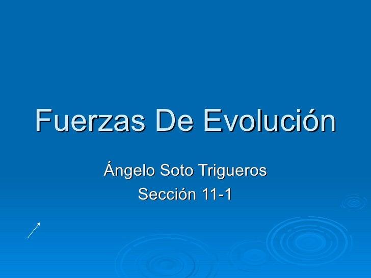 Fuerzas De Evolución    Ángelo Soto Trigueros        Sección 11-1