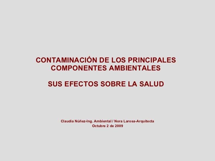 Nuñez   Larosa Contaminacion De Los Principales Componentes Ambientales