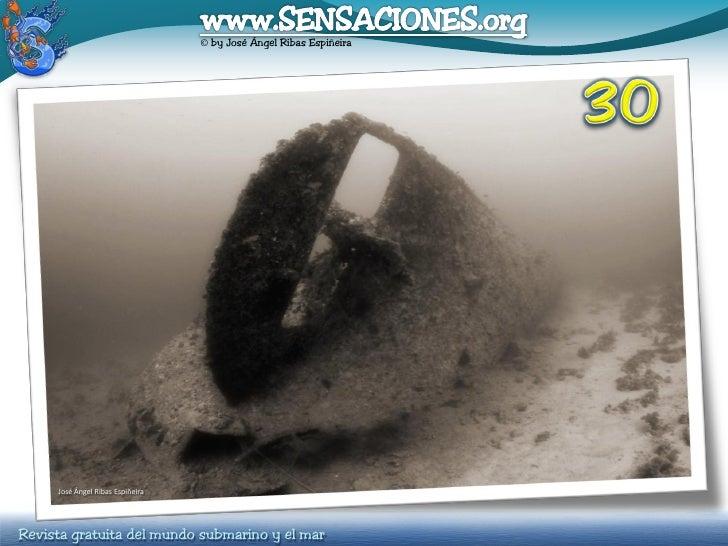 © by José Ángel Ribas Espiñeira          José Ángel Ribas Espiñeira     Revista gratuita del mundo submarino y el mar