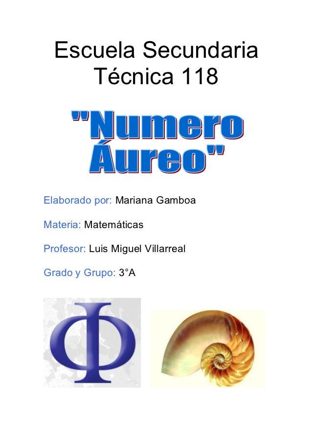 Numero aureo.12 GAMBOA